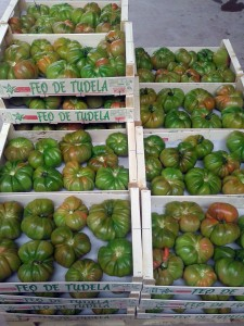 Charla para la mejora de tomates y pimientos locales de Navarra