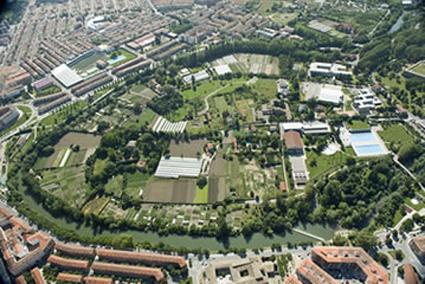 Proyecto «EcoParque Aranzadi»
