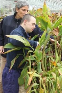 Iker San Miguel, con síndrome de Down, consigue un Certificado de Profesionalidad en jardinería
