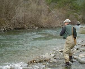 Desde hoy se pueden solicitar los permisos para la pesca de trucha en la región salmonícola superior