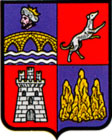 burgui_escudo