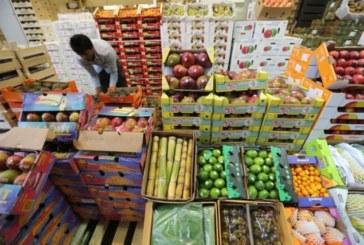 Bruselas destinará 125 millones a ayudas para compensar el veto ruso a frutas y verduras de la UE