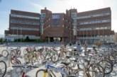 AGENDA: 29 de mayo, en Ciencias de la Universidad de Navarra, Pautas para la nutrición deportiva