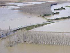 Los caudales del eje del Ebro, entre Miranda y Logroño, podrían acercarse a niveles «extraordinarios»
