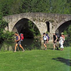 La UPNA cierra la próxima semana su ciclo de conferencias sobre el Camino de Santiago en Navarra en cuatro localidades