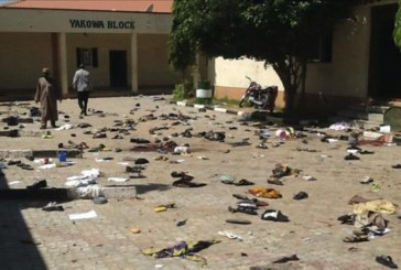 MSF llama la atención sobre la crisis humanitaria en Nigeria