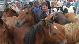 El polígono de Agustinos acoge el viernes una nueva edición de la feria de ganado equino de San Miguel