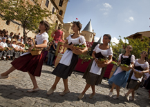 Olite acoge este domingo la Fiesta Oficial de la Vendimia