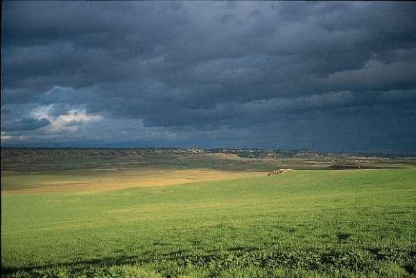 Navarra destina 2,4 millones de euros para el Plan de Seguros Agrarios Combinados 2016