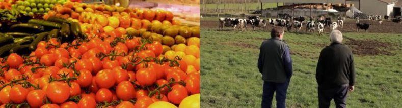 El Gobierno de Navarra destina 9 millones de euros para la industria agroalimentaria