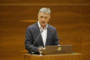 Koldo Martinez-Parlamento