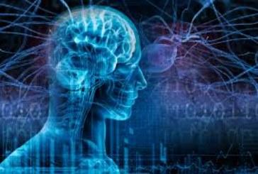 EEUU, Canadá y España, unidos para investigar la epilepsia más severa