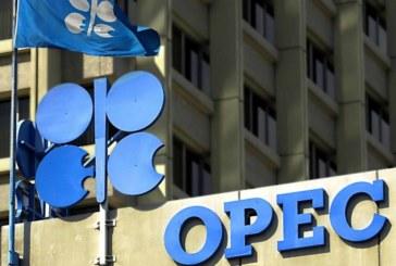 OPEP y aliados podrían tener que volver a reducir su oferta, según comité