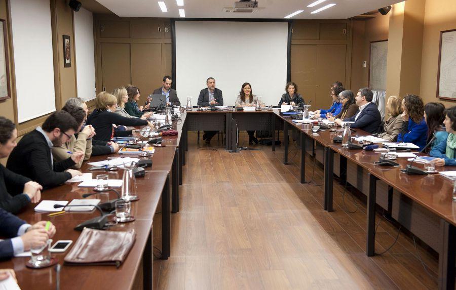 El vicepresidente Laparra presenta al Consejo Navarro de Bienestar Social las líneas maestras del Gobierno en esta materia