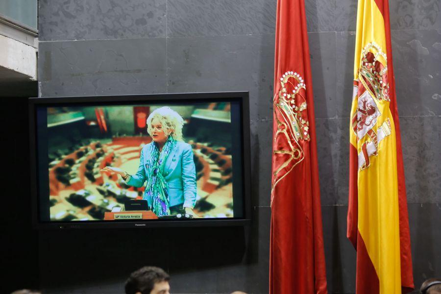 El Parlamento de Navarra guarda un minuto de silencio en memoria de María Victoria Arraiza