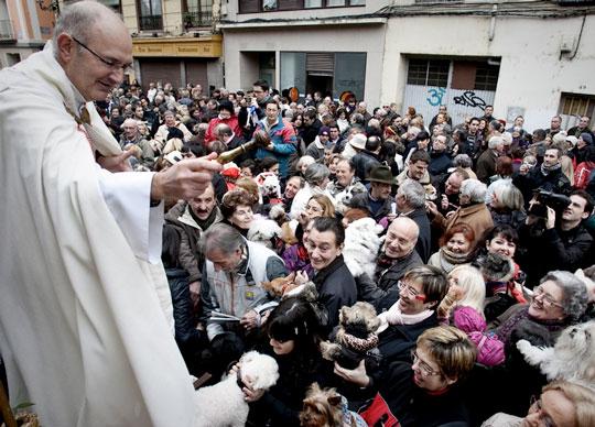 San Antón: Las iglesias abren hoy sus puertas para bendecir a los animales