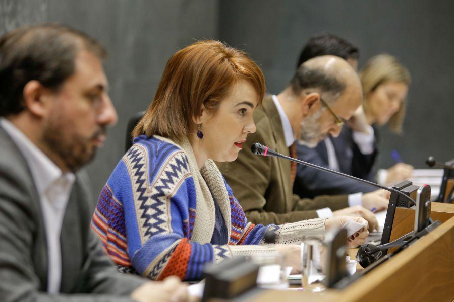 El Parlamento de Navarra aprueba por unanimidad la modificación de la Ley Foral de Patrimonio