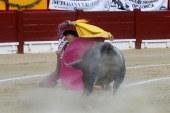 Triunfo y gravísima cornada a Escribano en la cuarta de la feria de Alicante