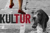 AGENDA: 1, 2 y 3 de septiembre, en Lodosa, Aoiz y Burlada, Programa cultural