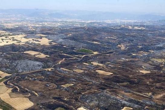 El incendio de Tafalla ha afectado al 56,71% de superficie agrícola y al 41,12% forestal