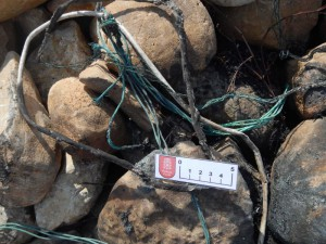 Detalle del cable quemado.
