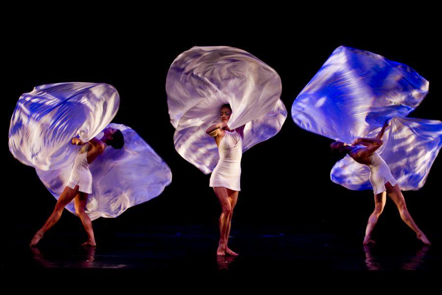 AGENDA: 15 y 16 de noviembre, en Baluarte de Pamplona, espectáculo Momix Forever