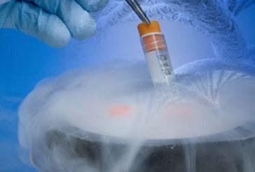 La criopreservación, un avance para secuenciar células individuales