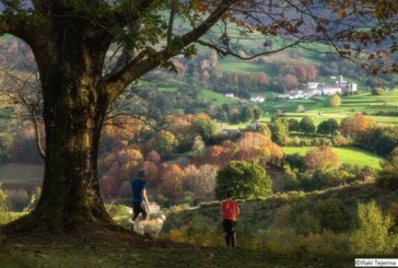 Tesoros naturales y parques de aventura en Navarra
