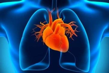 Una prometedora diana para tratar la insuficiencia cardíaca