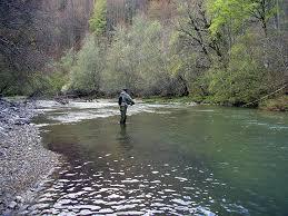 Investigan el hallazgo de un cráneo humano en el río Irati a su paso por Orbaiceta