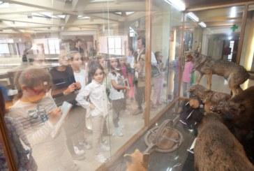 El Museo de Ciencias Universidad de Navarra lanza unas jornadas para divulgar la ciencia de forma práctica y divertida
