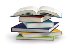 UPN continua el seguimiento al currículo educativo navarro para que se respete la realidad institucional