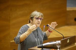 Marisa de Simón, parlamentaria de I-E