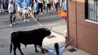 Un joven, corneado en el 'toro con soga' de Lodosa