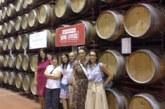 """El Gobierno de Navarra subvenciona el club de producto """"Ruta del Vino de Navarra"""""""