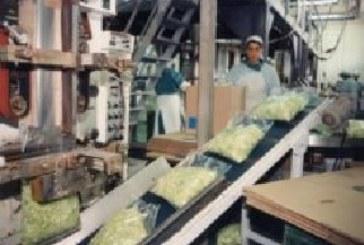 Los precios industriales subieron un 3,6 % en Navarra en un año