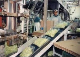 Navarra encabeza aumento ventas industria, que suben 5,9 % agosto en España