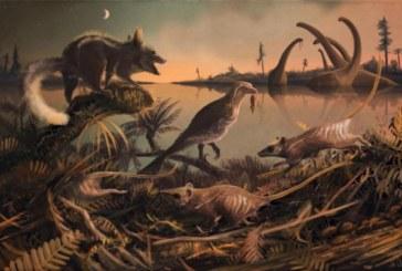 Una criatura similar a una rata, entre los ancestros más antiguos del hombre