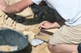 La extinción de los neandertales fue lenta y casi agónica, según un experto