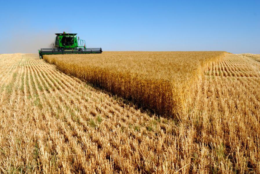 Ejecutivo Foral y entidades agrarias ven «insuficiente» el presupuesto para la PAC