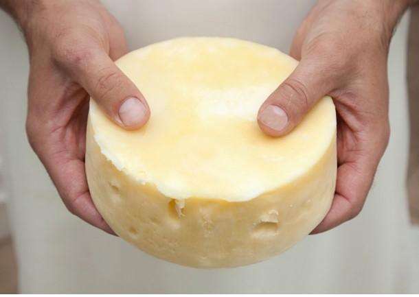 Navarra informa de alerta alimentaria de toxiinfección en quesos y retira los afectados