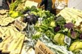 Navarra encabeza producción de verdura congelada en España
