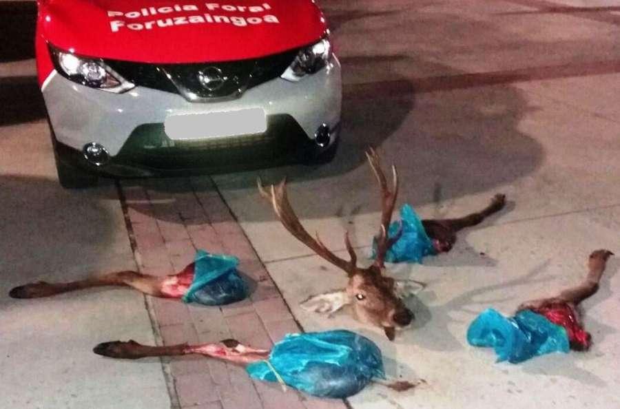 Interceptan a dos jóvenes que transportaban un ciervo descuartizado