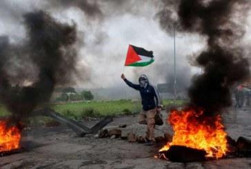 Siete palestinos muertos y unos 500 heridos en incidentes en la frontera de Gaza