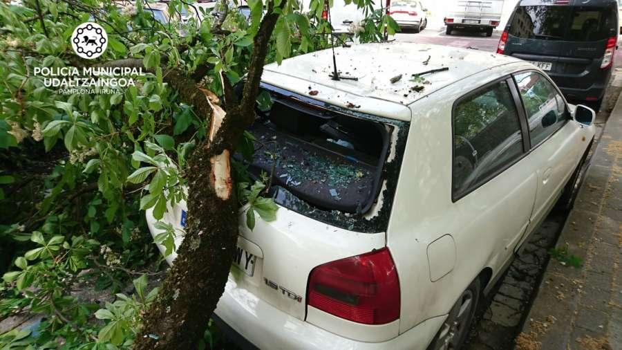 Dos vehículos sufren daños al caerles una rama de un árbol en Pamplona