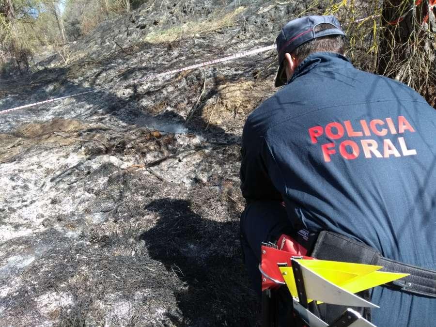 Identificado presunto autor de incendio que afectó cinco hectáreas en Falces