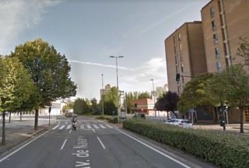 Herido un trabajador cuando talaba un árbol en Pamplona