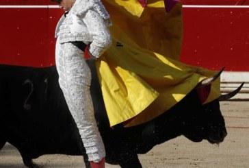 Rey, Aguado y Ferrera, principales atractivos de Feria del Toro de Pamplona