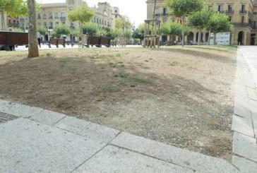 El PSN denuncia la decadencia de parques y jardines de Pamplona