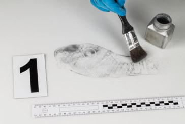 El reto de las ciencias forenses es proveer a la Justicia de «pruebas irrefutables»